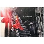 aiko(アイコ) ポスター May Dream