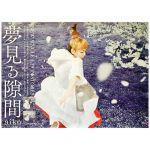aiko(アイコ) ポスター 夢見る隙間 2015