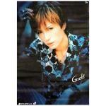Gackt(ガクト) ポスター バラ衣装