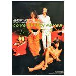 BLANKEY JET CITY(ブランキー・ジェット・シティ) ポスター LOVE FLASH FEVER 1997