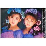 Wink(ウィンク) ポスター Especially For You 優しさにつつまれて 鈴木早智子 相田翔子 1989  B1 大型