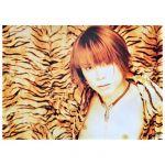 T.M.Revolution(西川貴教) ポスター wild rush 1999