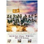 SKE48(AKB48) ポスター 革命の丘 2017