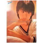 河合奈保子(かわいなおこ) ポスター HALF SHADOW 1983