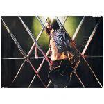 MIYAVI(雅) ポスター MIYAVI 2013 タワーレコード