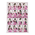 NMB48(エヌエムビー) ポスター チームN 1st Stage 誰かのために 山本彩 等 2011