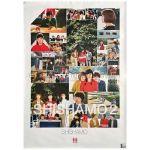 SHISHAMO(シシャモ) ポスター SHISHAMO 2