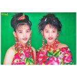 Wink(ウィンク) ポスター 真夏のトレモロ 鈴木早智子 相田翔子 1991