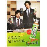 KinKi Kids(キンキキッズ) ポスター 告知ポスター(16茶)2008年